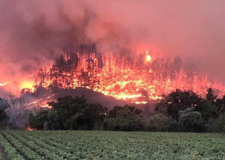 Glass fire at Silverado Trail